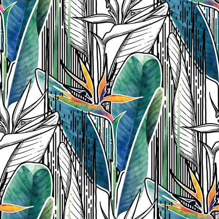 Vector nahtloses Muster von exotischen Strelitziablumen, die in Linie grafische und künstlerische Techniken des Aquarells gezeichnet werden
