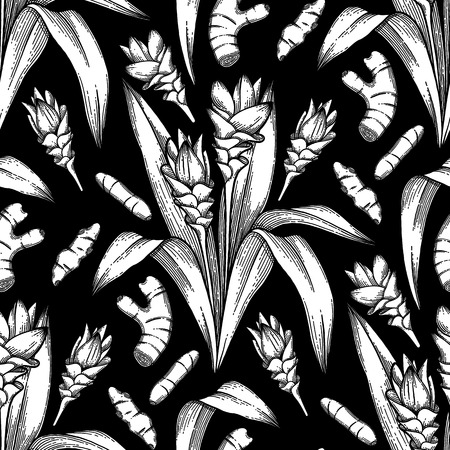 Graphic curcuma seamless pattern. Vector natural spices. Coloring book page for adults and kids.
