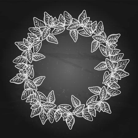 Graphic oregano wreath Illustration