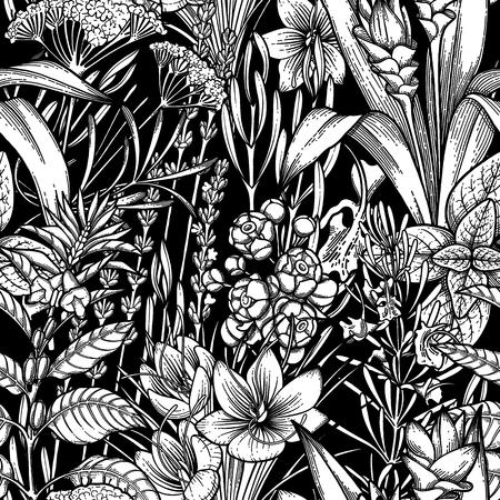 Grafische Sammlung von Kräutern und Gewürzen. Vektor nahtloses Muster