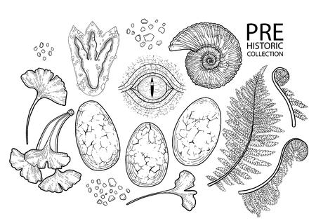 Colección gráfica prehistórica