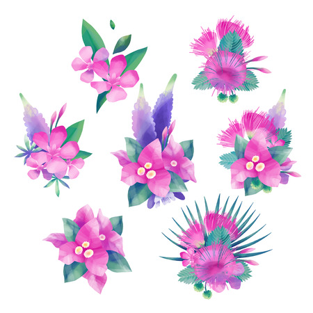 Exotic collection of tropical floral vignettes