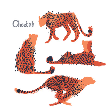 Graphic collection of cheetahs drawn with rough brush