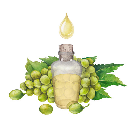Watercolor bottle of essential oil made of grape seed Banque d'images