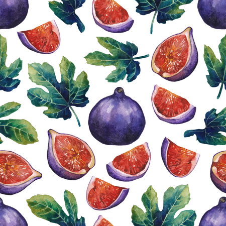 Seamless pattern of fig fruits and leaves.