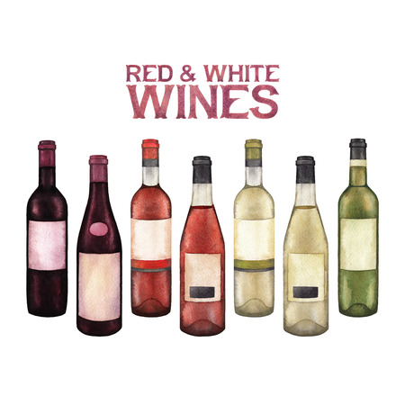Watercolor collection of red and white wine bottles. Stock Photo