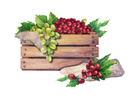Watercolor wooden box of grapes decorated with leaves Foto de archivo