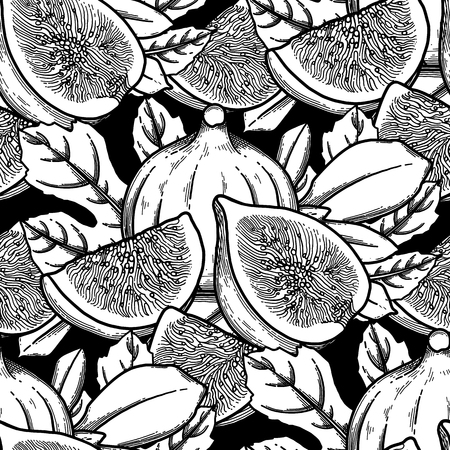 Graphic fig fruits and leaves. Vector botanical seamless pattern Ilustracje wektorowe