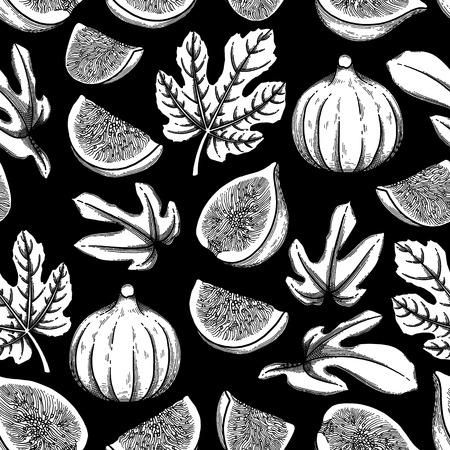 Fruits et feuilles de figues graphiques. Modèle sans couture botanique de vecteur Vecteurs