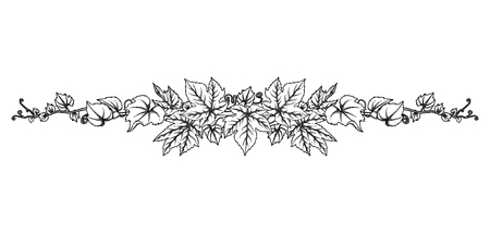Graphic branch with grape leaves and curly elements