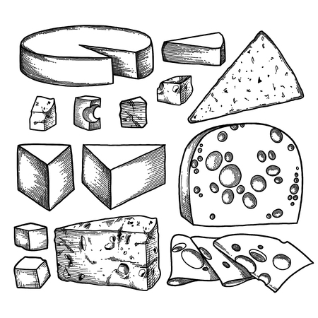 Graphic collection of different types of cheese. Ilustração