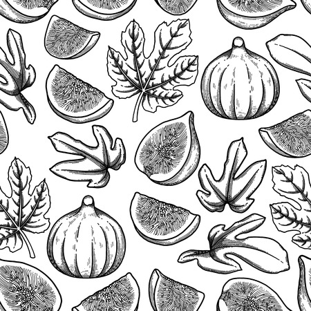 Graphic fig fruits and leaves. Vector botanical seamless pattern Vettoriali
