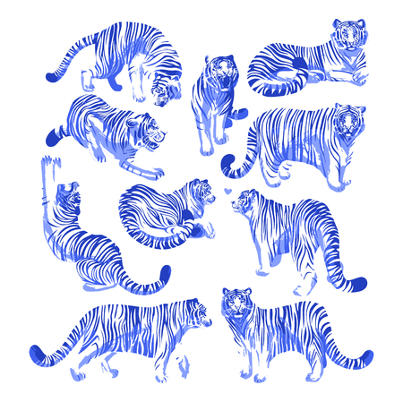 Graphic collection of tigers in different poses. Vector exotic design elements isolated on white background Illustration