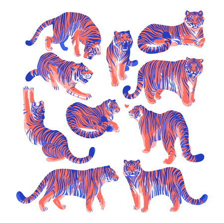 Graphic collection of tigers in different poses. Stock Photo