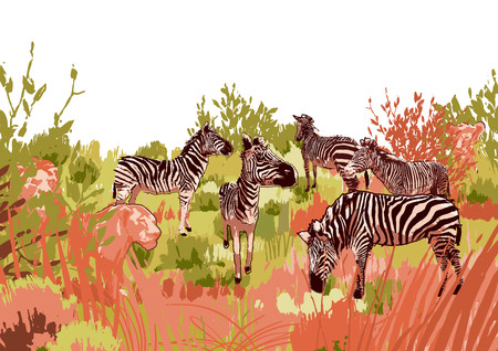 Lions hunting scene on a zebras surrounded by steppe landscape in calm colors. Vector design drawn in the technique of rough brush