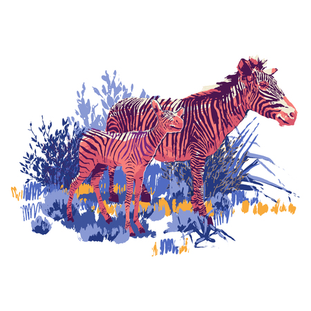 Zebra and the cub standing in steppe landscape. Vector graphics drawn in the technique of rough brush in bright colors