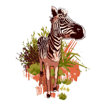 Graphic zebras walking forward in the steppe landscape. Vector illustration drawn in the technique of rough brush in calm colors