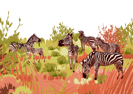 The herd of zebras sowing in steppe landscape. Vector graphics drawn in the technique of rough brush in calm colors 向量圖像