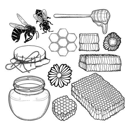 Graficzny zestaw butelek miodu, czapki, kroplownik, plastry miodu, pszczoły i kwiaty polne na białym tle. Izolowany projekt wektorowy