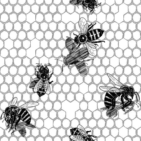 Graphic bees crawling on honeycomb. Vectorrepeated seamless pattern