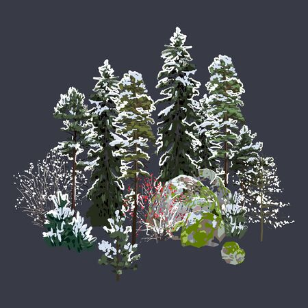Group of coniferous trees, bushes and rocks covered with white snow. Winter design. Vector natural illustration isolated on dark background