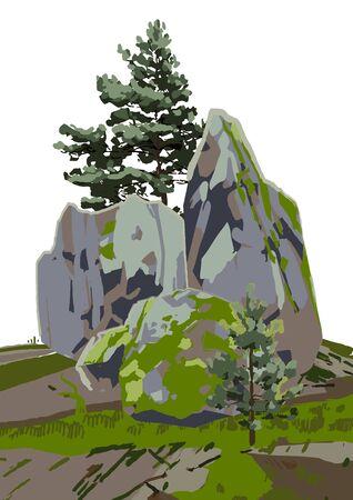 Gruppe von Nadelbäumen zwischen den Felsen, mit Moos bedeckt.