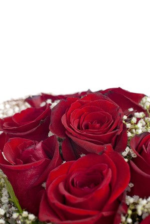 Red roses bouquet isolated on white background. photo