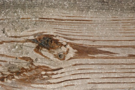 Old wood wall texture background. photo