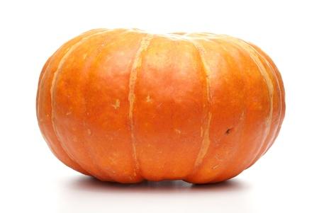 Orange pumpkin isolated on white backgroud. photo