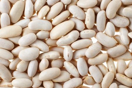 White bean background, food texture. photo