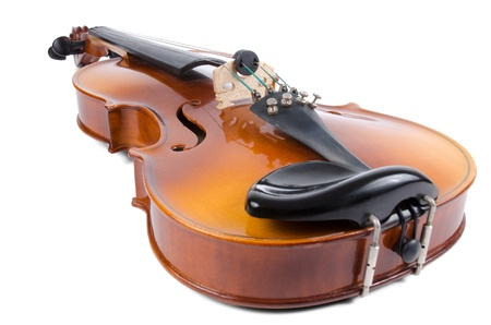 Violin close up isolated on white background. photo