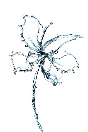 Orchid flower made of water splash isolated on white background. Фото со стока