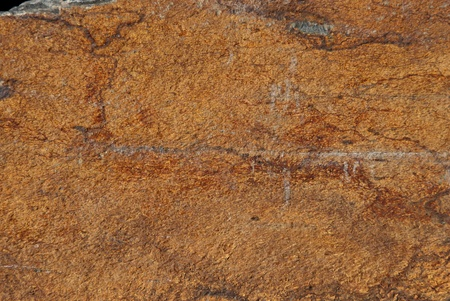 Background texture of earthy colored shale stone photo