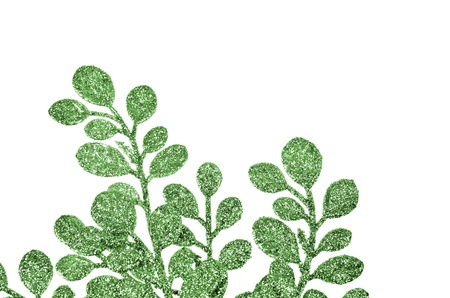 Christmas decorative green leaves isolated on white background. photo