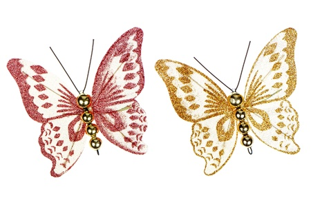 brooch: Butterfly decorations isolated on white background.