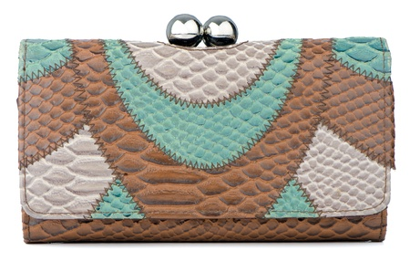 clutch: Elegant brown and green clutch bag.
