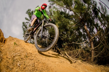 frenos: andar en bicicleta en el bosque. Foto de archivo