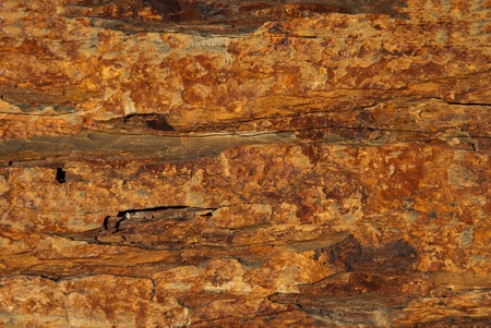 Background texture of earthy colored shale stone Stock Photo - 13583520