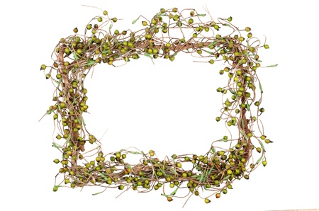 Christmas frame branches decoration isolated on white background. Stock Photo - 13903994