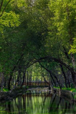 Park Natural serra Estrela - Portugal. Stock Photo - 13903999
