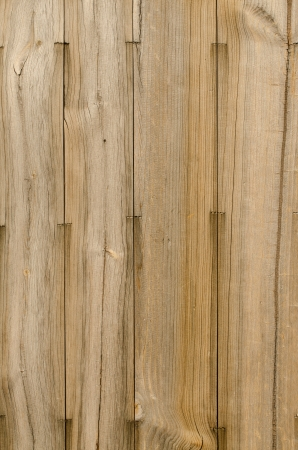 Wood planks texture background. photo