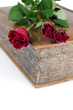 Red roses in a closed book isolated on white background  photo