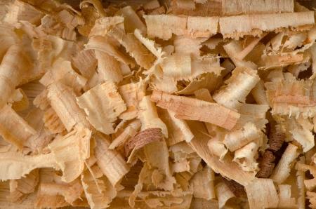 wood shavings: Background of the golden curls of wood shavings