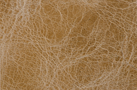 brown leather texture closeup detailed background  photo