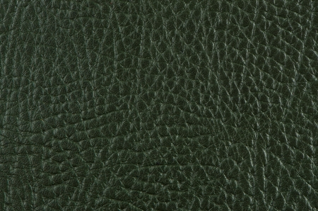 Green leather texture closeup detailed background. photo