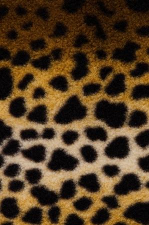 Pattern of a tiger skin wildlife background. photo