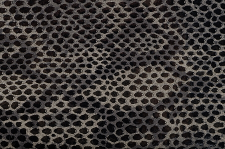 Closeup of snake Skin Leather Texture. photo