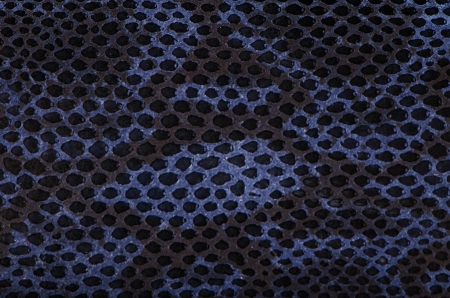 Blue python snake skin texture background. photo