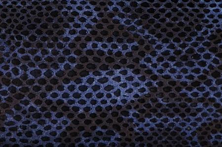 Blue python snake skin texture background. Stock Photo - 15042410