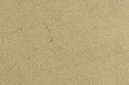 Closeup detail of green recycled paper background Stock Photo - 15258076